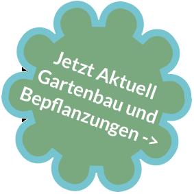 Button für Weiterleitung Aktuelles Kontakt