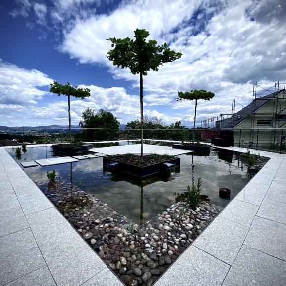 Teich auf Dachterrasse mit Aussicht